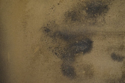 THE (detail): Ashes